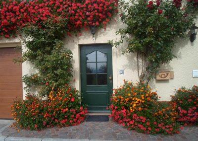 Ferienhof Bock in Amtzell | Hereinspaziert